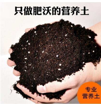 批发花卉专用营养土 种菜土 养花土 栽培基质 有机土200克/袋