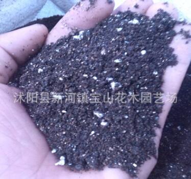 进口技术配置的营养土 含有珍珠岩蛭石 景天多肉植物营养土500克