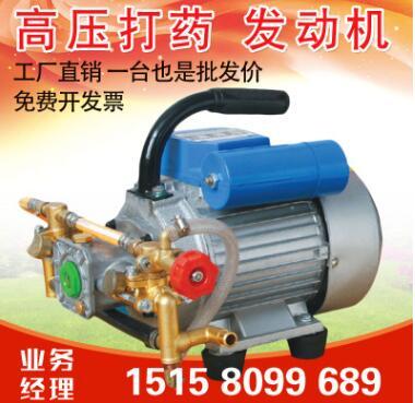 秦岩220V电动喷雾器园林绿化施肥弥雾机手提式打药机卡西发动力