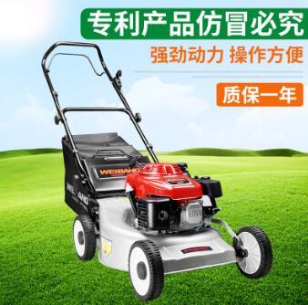 园林机械 草坪机 草地割草机 修剪机 草坪割草机 厂家直销