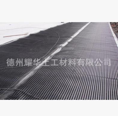 厂家直销 植草绿化排水板 各类园林绿化排水板