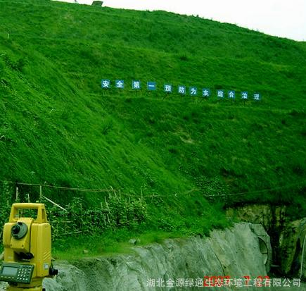 喷播用有机基材 护坡绿化添加剂 挂网喷播后可抗冲刷
