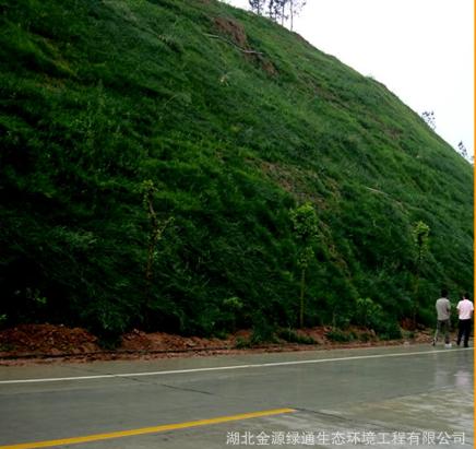 山体岩石绿化 护坡绿化添加剂核心材料 防冲刷的生态基材