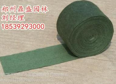 三层加膜包树布 护树多少付45保湿 绿化防寒棉 缠树带无纺布裹树布