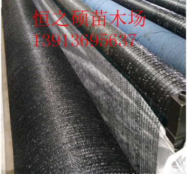 黑色遮阴网 大棚遮阴网 隔热网 防晒网 遮阳率是85%