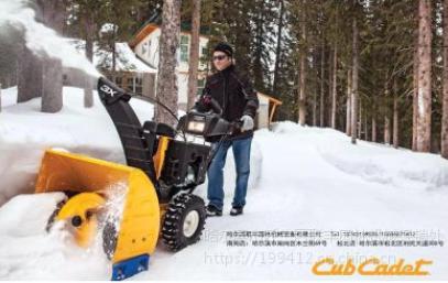 专业小型扫雪机 抛雪机 清雪机 除雪机 扬雪机