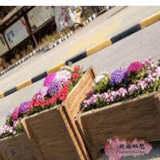 绿化带花池 户外生态仿木纹花箱 水泥仿木花槽河道景观混凝土花箱