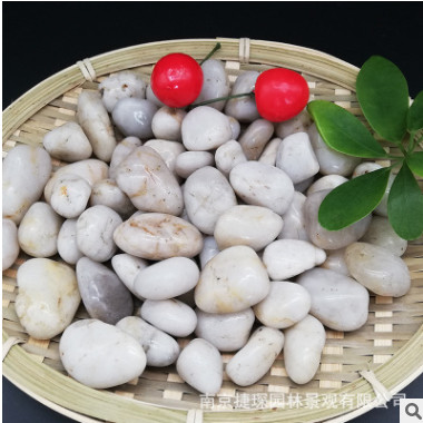 一级抛光五彩鹅卵石天然雨花石 精品铺路园林装饰工程鱼缸