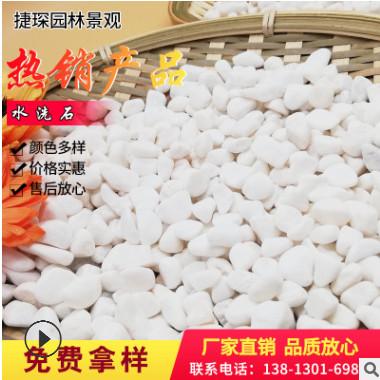 白色鹅卵石洗米石多肉盆栽植物装饰专用园林建筑铺路专用水磨石地
