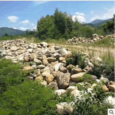 精品推荐天然园林石头 大型园林景观石 广场布景园林石