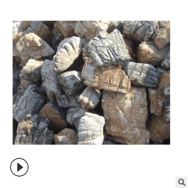 龟纹石盆景 盆景龟纹石 小块龟纹石产地批发