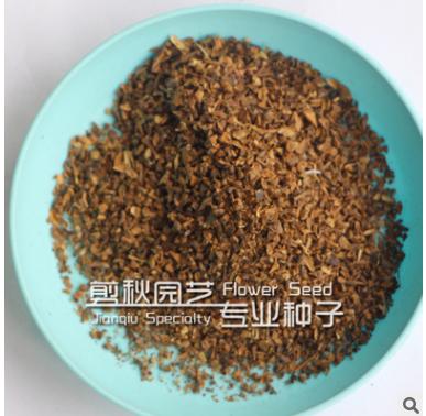 紫薇种子别名:痒痒花 属落叶灌木 优质品种
