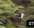 同源园林企业宣传片 (7播放)