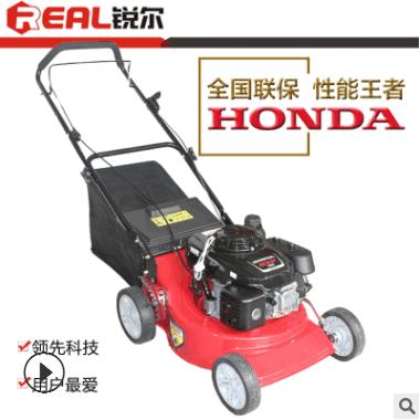 进口本田GXV160动力草坪机草坪修剪机手推式汽油剪草割草机除草机