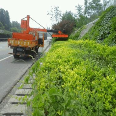 销售车载式绿化植物修剪车 绿篱修剪机 园林修剪车载式修剪机