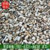英德产地批发铺路鹅卵石装饰砂层石鱼池过滤石