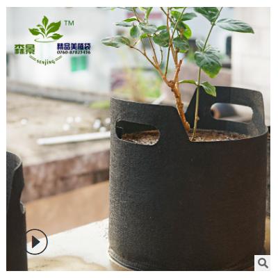 出口版黑色无纺布美植袋/grow bag植树袋种植袋育苗袋Fabric pot
