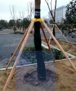直径5cm6cm树木支撑杆树木支撑架树木支撑新型树木支架客户定制支