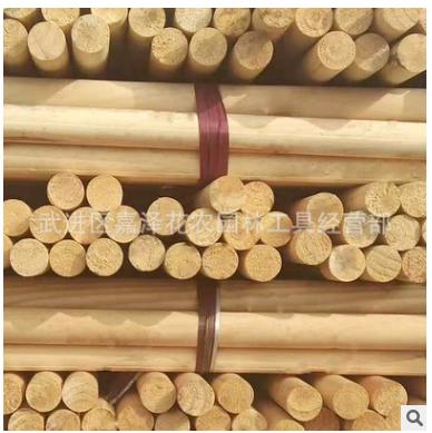 树木支撑杆 防台风架杆园艺用品 固定树木支撑架