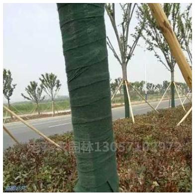 大树包树绵树木保温布大树防寒布绿化包树布移栽树木防护布保湿棉