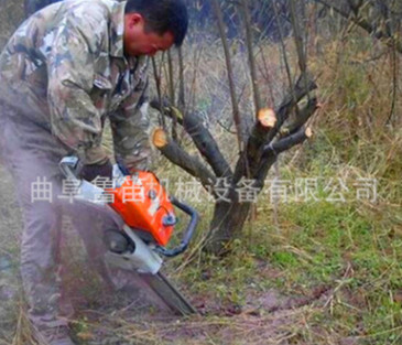 树木带土球挖树机 林业树木移苗机 铲式汽油挖树机