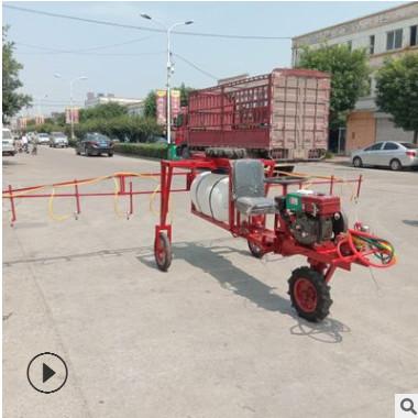 批量生产农用三轮自走式打药机 撒药机 汽油动力果园打药喷药机