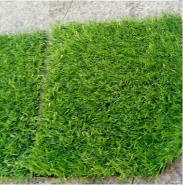 园艺工具幼儿园草坪足球场人造草坪 加密人工草坪 园林工具