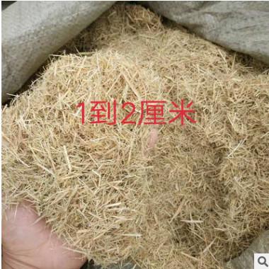 厂家直销稻草纤维批发优质草纤维 绿化工程护坡材料 硅藻泥纤维草