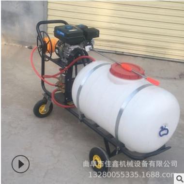 园林果树高压打药机厂家 柴油手推喷雾器 佳鑫蔬菜基地杀虫机