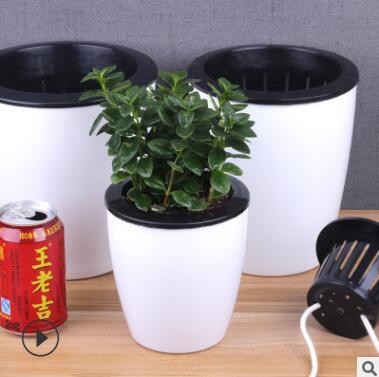 批发自动吸水懒人花盆 水培懒人盆 塑料树脂大号创意绿萝盆栽花盆