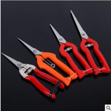 采摘水果蔬果稀果剪 SK5钢修枝果枝剪批发 不锈钢尖头果园摘果剪