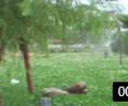 河北园林喷灌设备 (273播放)