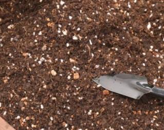 微景观营养土