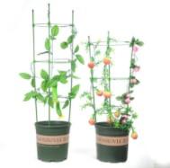园艺支柱 藤蔓爬藤架 包塑钢管用各种配件