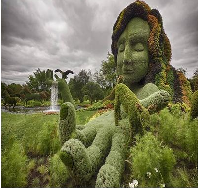 茵能绿艺雕塑设计施工 免浇灌易维护植物墙
