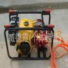 供应担架式机动喷雾器 高压果林药泵 汽油机喷药泵 临沂龙跃