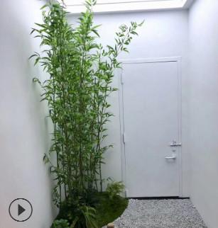 仿真竹子假竹子 装饰隔断屏风绿植造 景室内客厅装饰仿真竹子