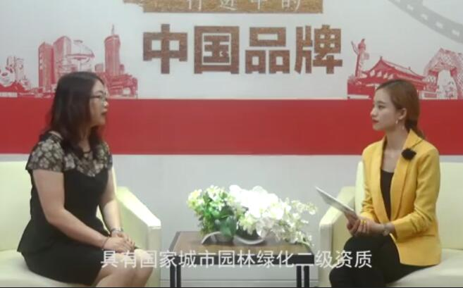 四川圣泓祥峰园林绿化工程有限公司人物专访 (215播放)