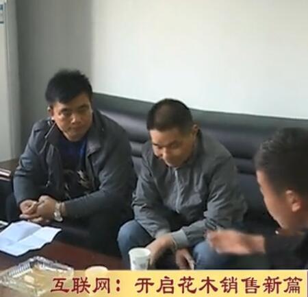 电视台专访沭阳好景园林绿化苗木基地董事长马飞 (408播放)