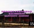 一个中国园林景观艺术大家的生涯-采访袁洪亮 中国生态工程艺术的起点 (216播放)