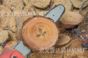 可伸缩高枝油锯(伸缩高度达到4米)