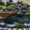 上海鱼池锦鲤鱼池过滤系统 净化水绿园林景观工程施工