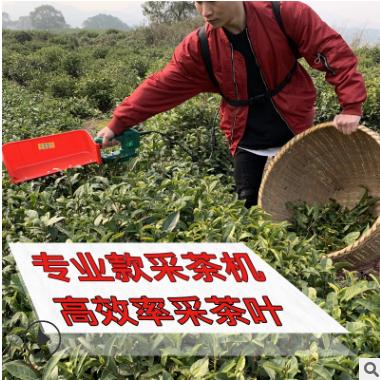 新款单人单手采茶机锂电池采茶修剪机电动采茶迷你电动茶叶采摘机