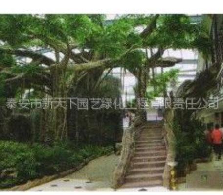 供应提供园林景观专用假山假树【新】