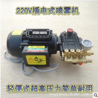 农用220V电动打药机插电式涮洗车机轻便式高压喷雾消毒机手提式喷