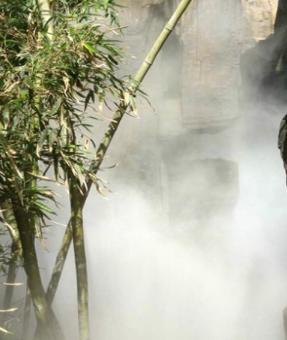 假山园林人造雾造景