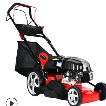 GXV160动力割草机草坪机四冲程汽油自走手推式打草剪草机除草机