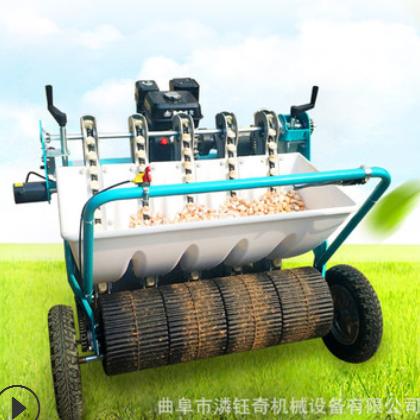 供应自走式大蒜播种机汽油动力大蒜种植机五行农用大蒜栽种机厂家