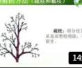 园林苗木栽植前的修剪技术----保证苗木成活的根本。 (206播放)