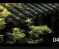 古典园林风貌建筑人物风情 古建筑风情高清实拍素材 (155播放)